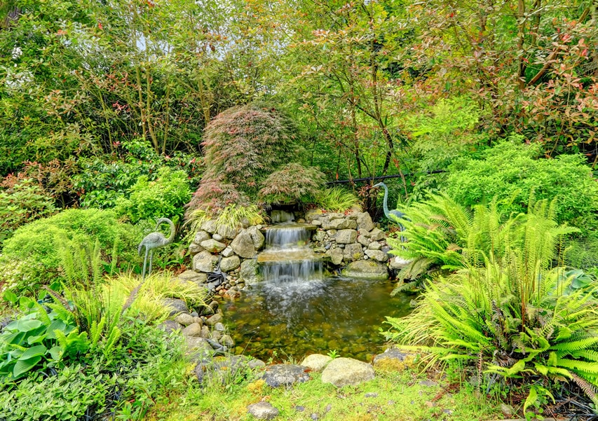 Exotic garden with waterfall pond and circularly placed rocks