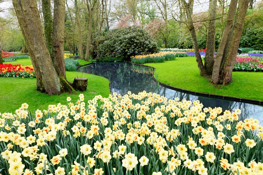 Flower garden with winding river water feature