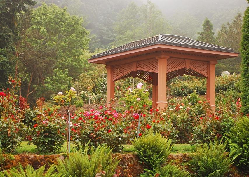 Tall gazebo in rose garden