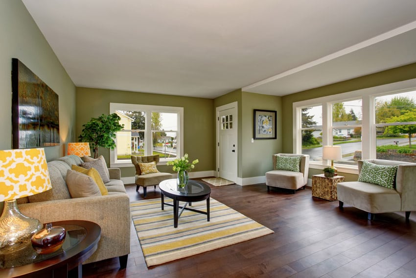 Green Paint Living Room. Living room with green paint and wood flooring What Does the Color Green Mean  Interior Design Guide Designing