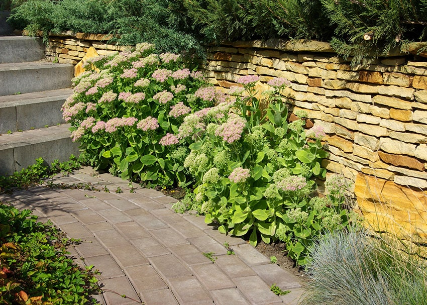 Red stone paver walkway past stacked stone wall