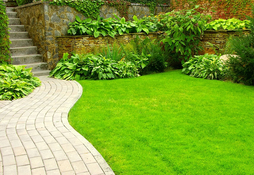 Curving paver walkway past lawn and leading to concrete steps to home