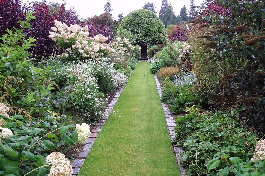 Grass pathway through garden plants