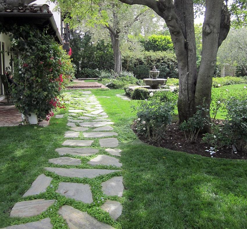 Walkway Ideas On A Budget Garden Amp Backyard Designs