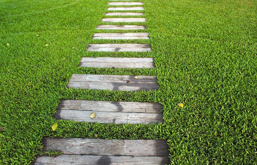 Rough wood plank path through grass