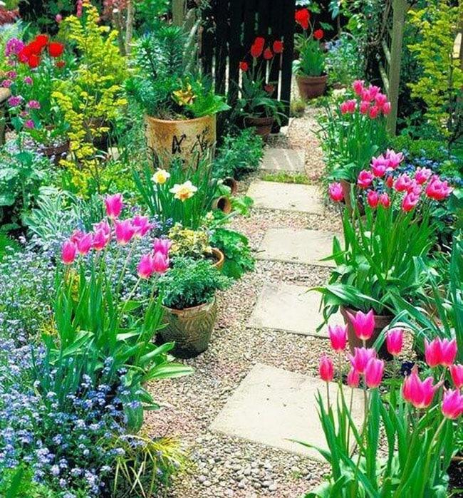 Gray Concrete Patio Paver In Flowering Tulip Garden