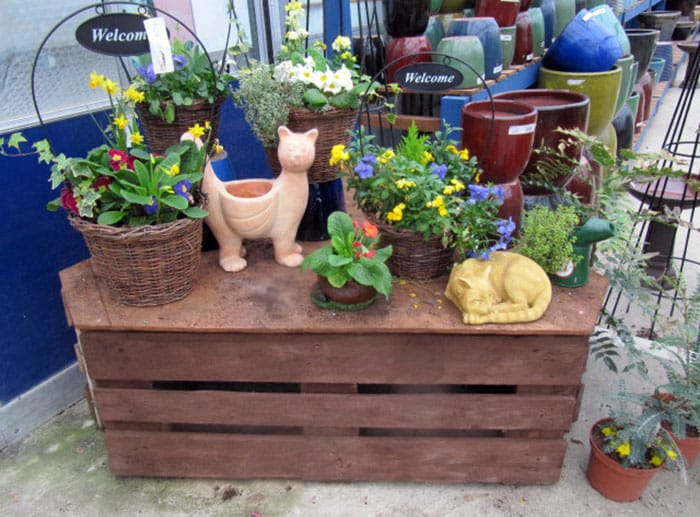 Wood pallet table for plants