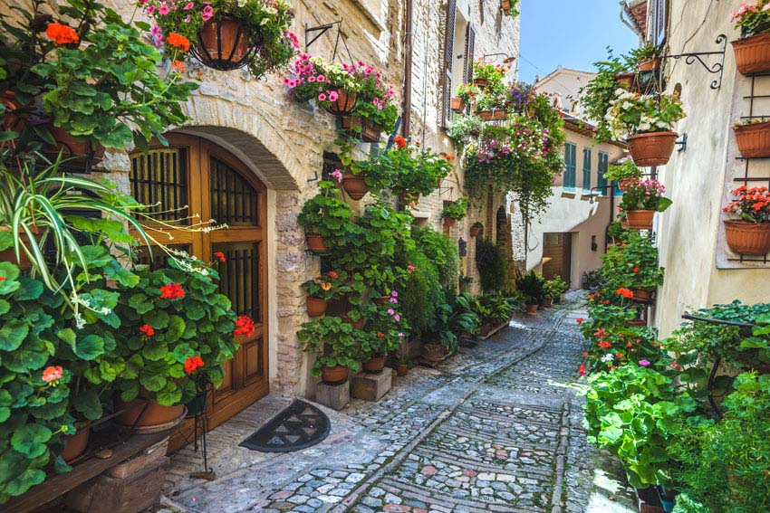 Beautiful old world city street with hanging flower pots