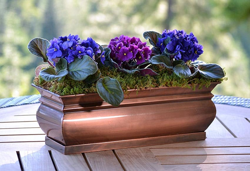 Copper finish flower box