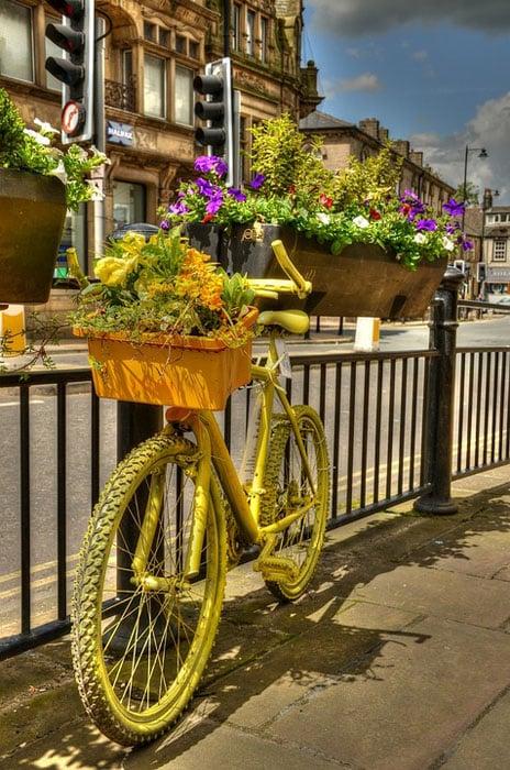 Decorative bicycle flower box