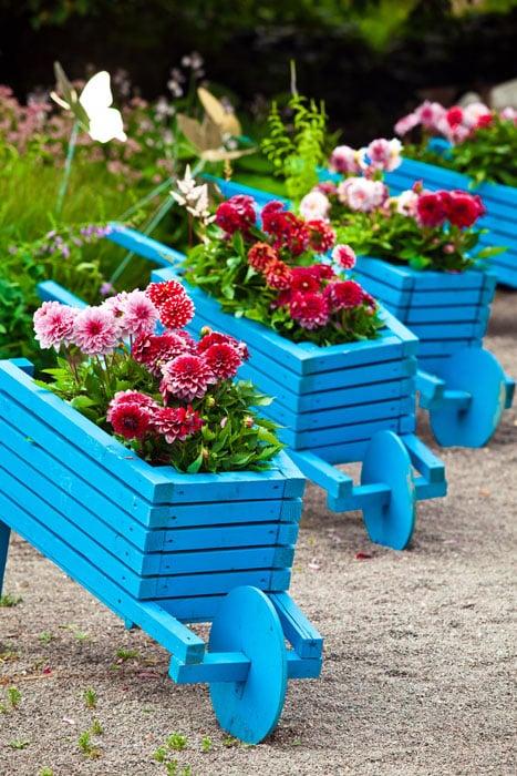 Decorative wheelbarrow flower boxes
