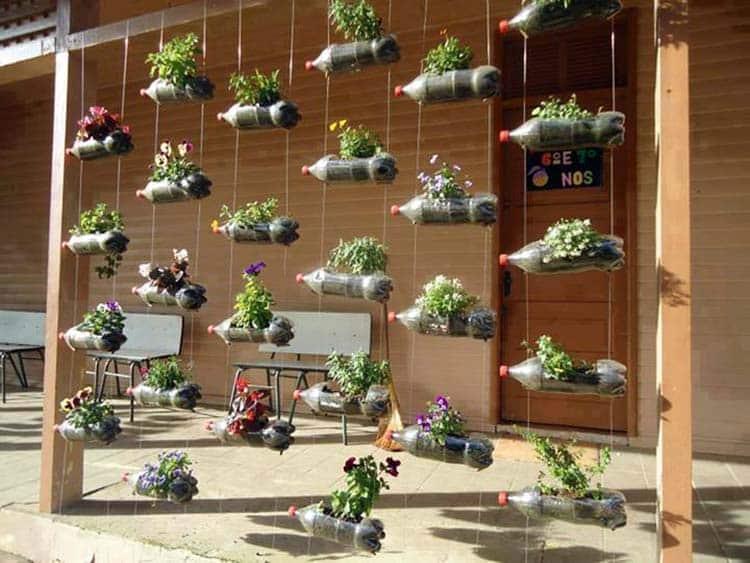 DIY hanging vertical garden with soda bottles