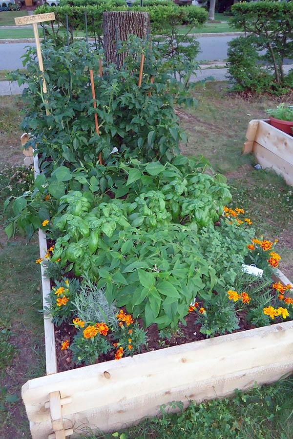 DIY wood flower planter box