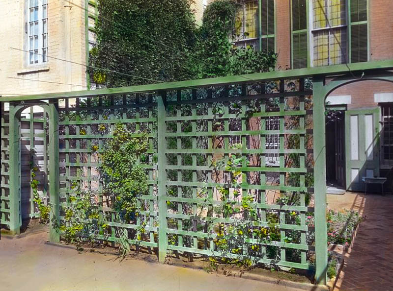 Green wood square lattice fence with climbing vines