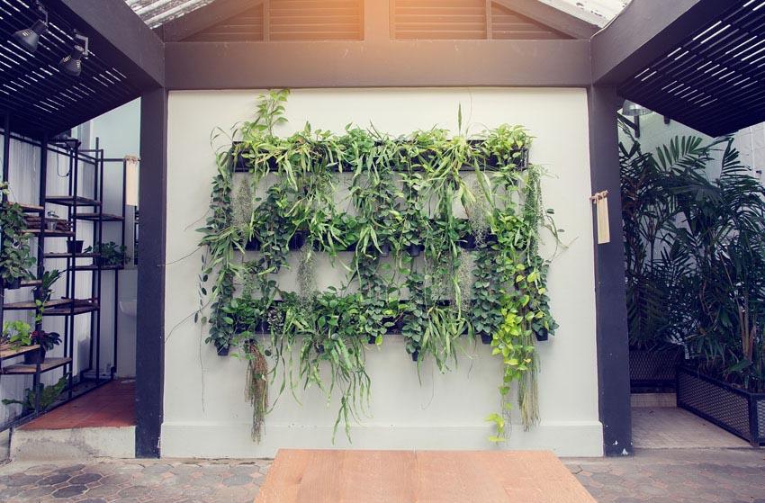 Hanging vegetable garden interior
