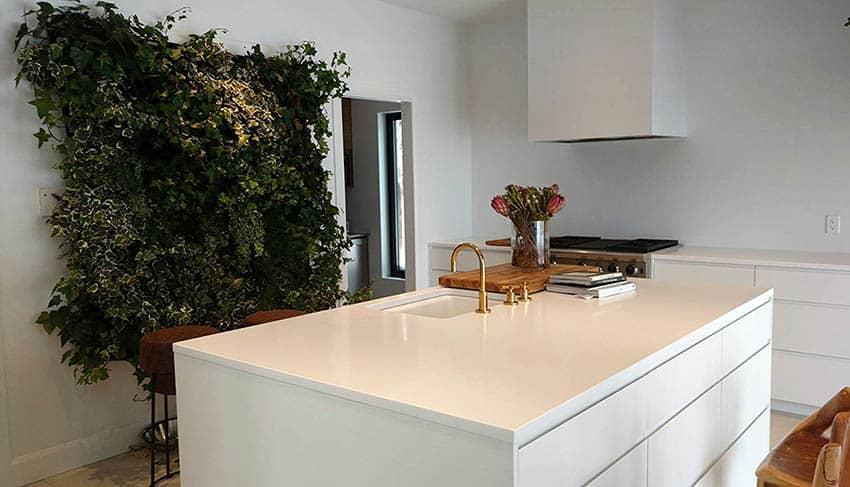 indoor vertical garden wall planter in kitchen