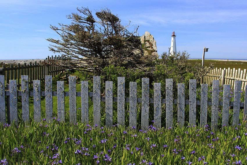 Irregular sized picket fence