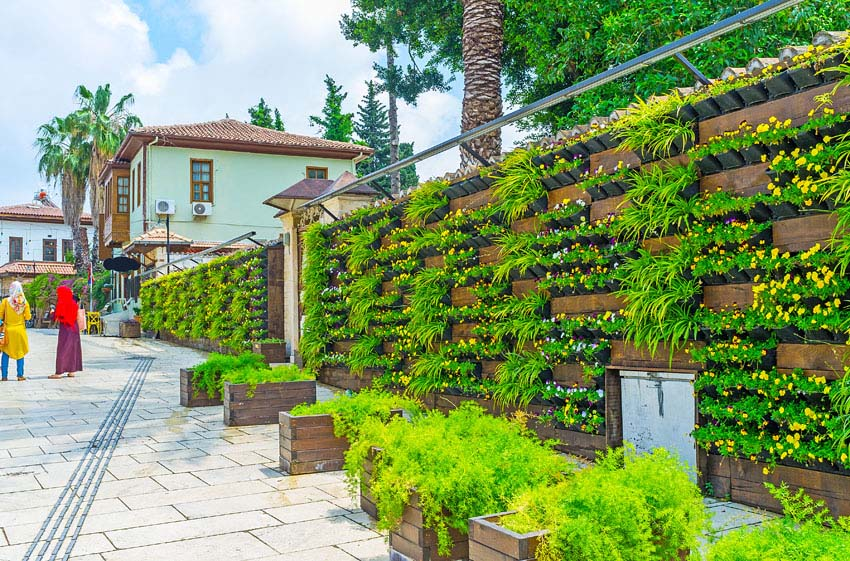 Large garden wall with flowering plants