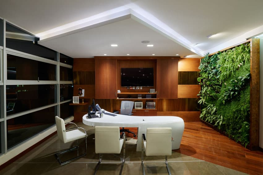Office with vertical plant garden
