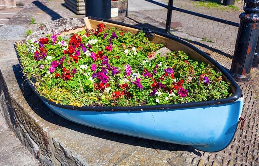 Old boat flower box planter