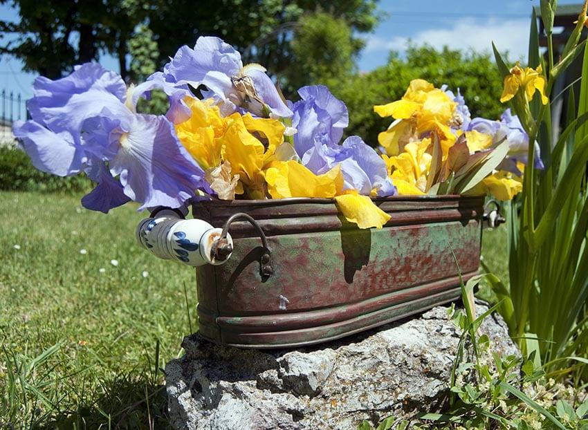 Old fashioned copper planter flower box