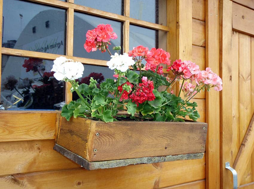 DIY rustic wood flower box in window