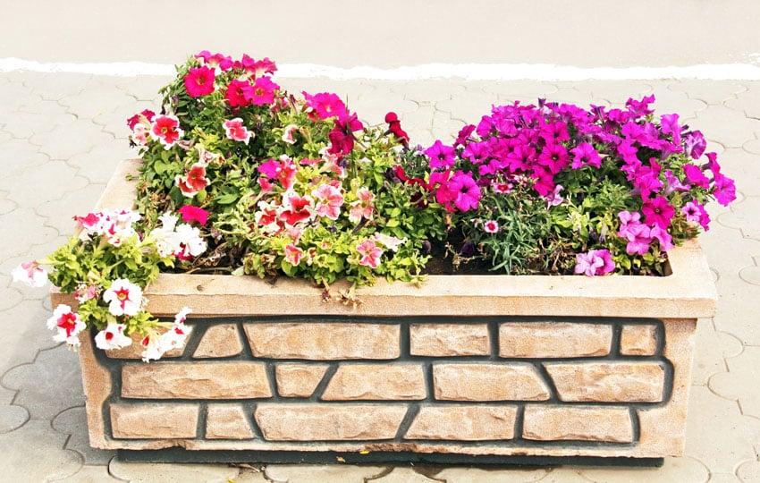 Stone flower box with beautiful flowers