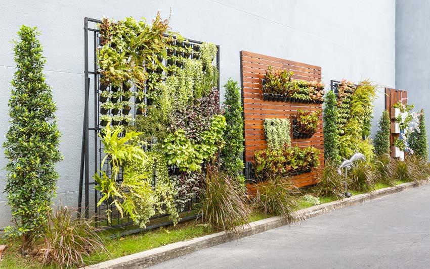 Variety of vertical garden structures