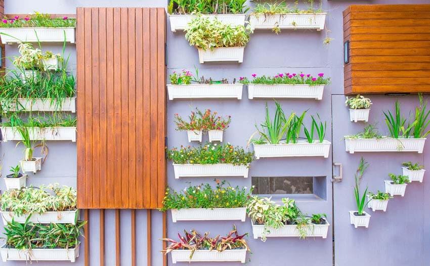 Vertical garden flower boxes