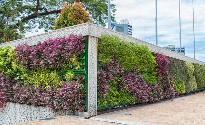 Vertical hanging planter walls in city