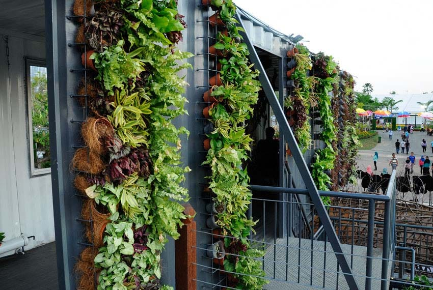 Vertical hanging planters on building