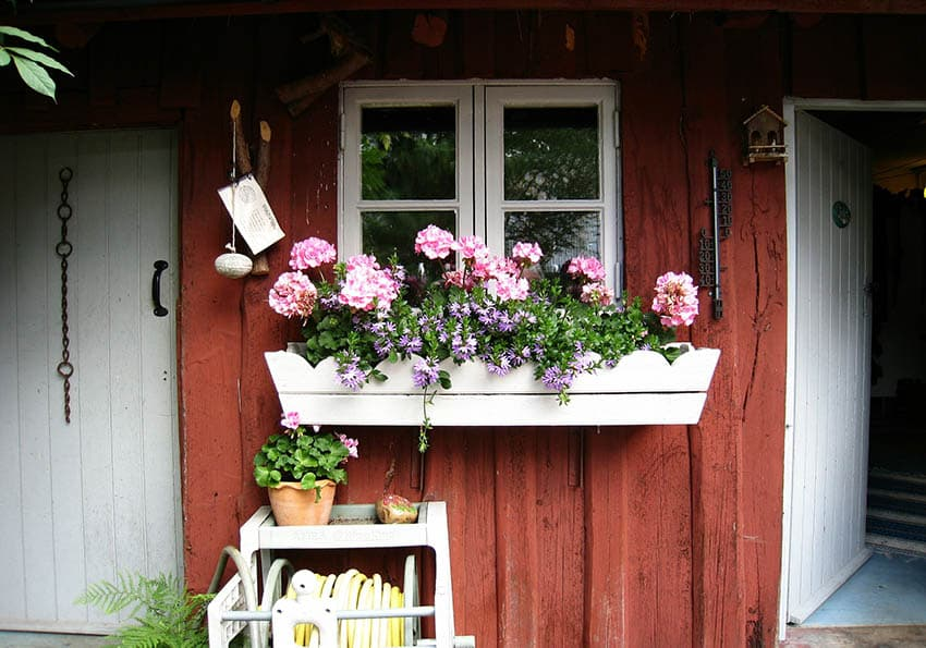 White rustic window box with pink flowers