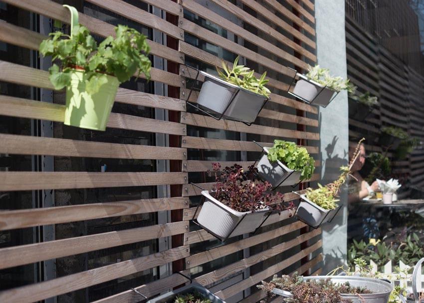 Wood slat wall with hanging plants
