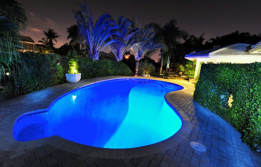 Kidney shaped pool design at night with lights