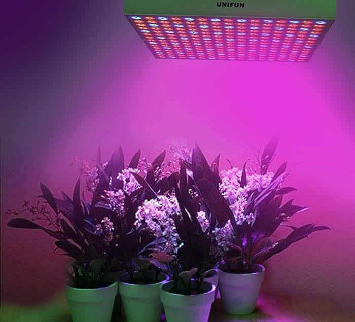 LED greenhouse light