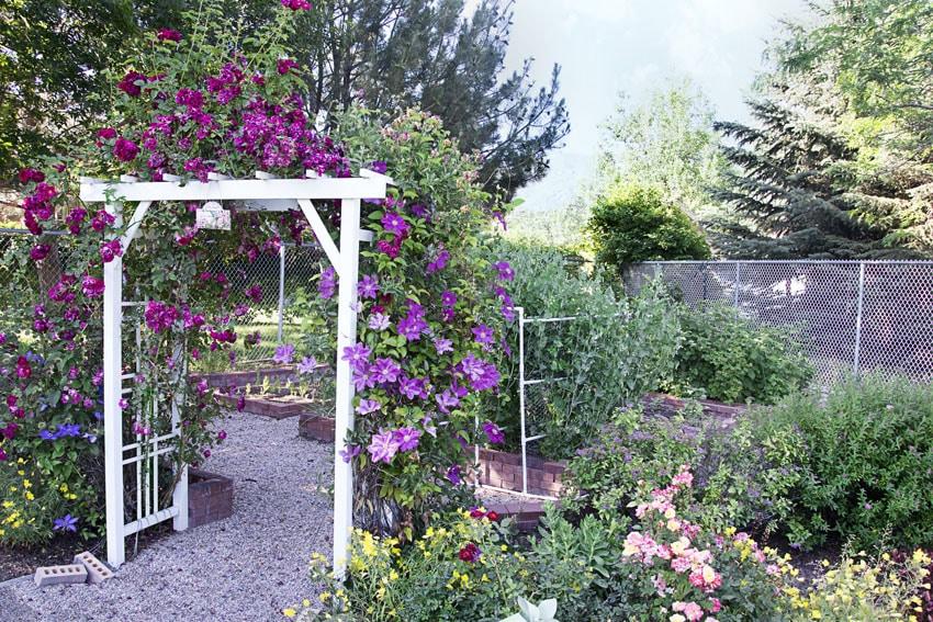 White arbor in garden