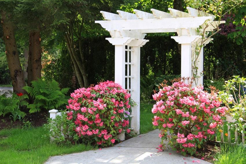 White garden pergola arbor