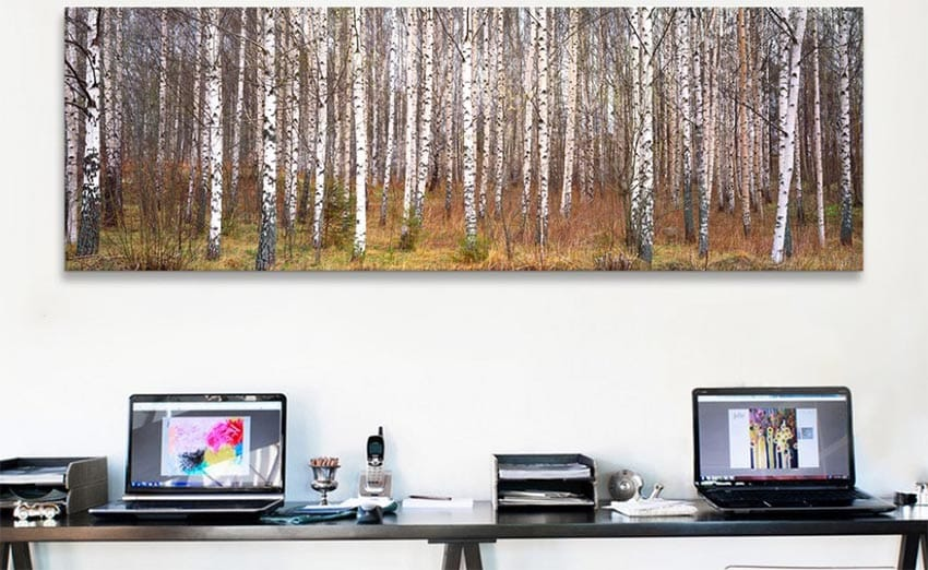 Zen forest print for home office