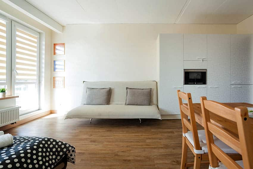 Studio apartment with daybed and wood flooring