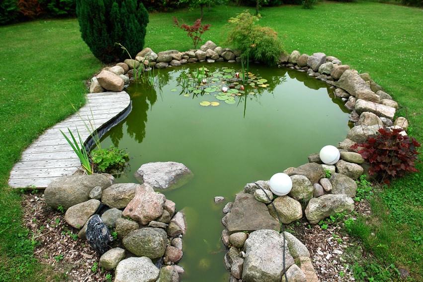 Backyard rock pond with lily pads