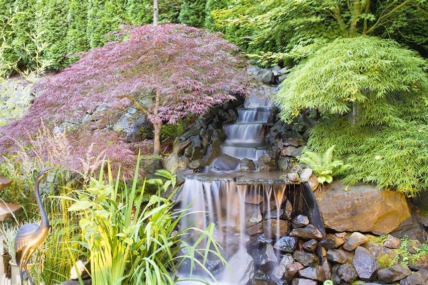 Beautiful asian inspired garden with waterfall