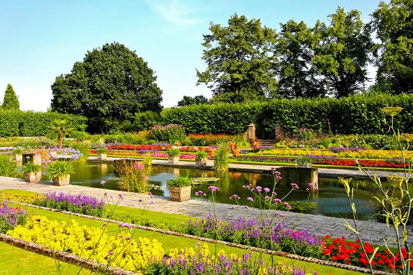 Beautiful garden with rectangular pond