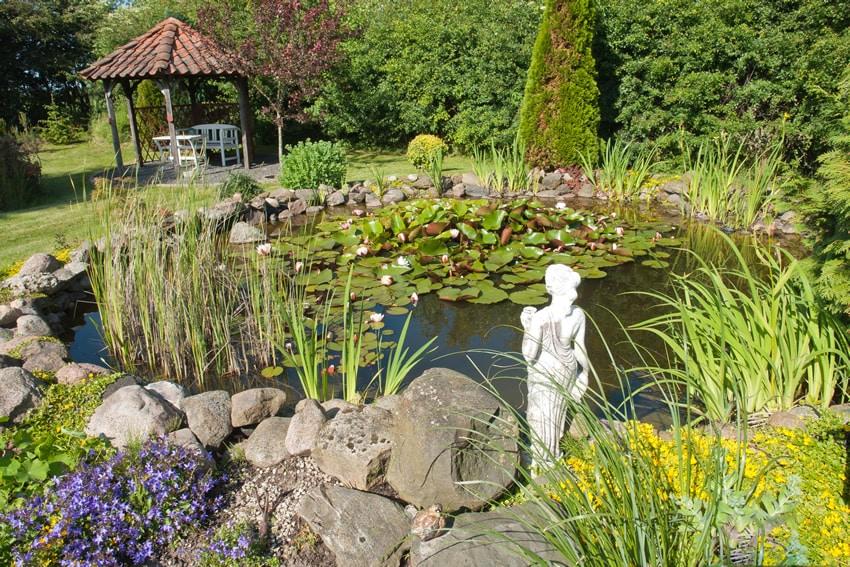 Natural garden pond with gazebo