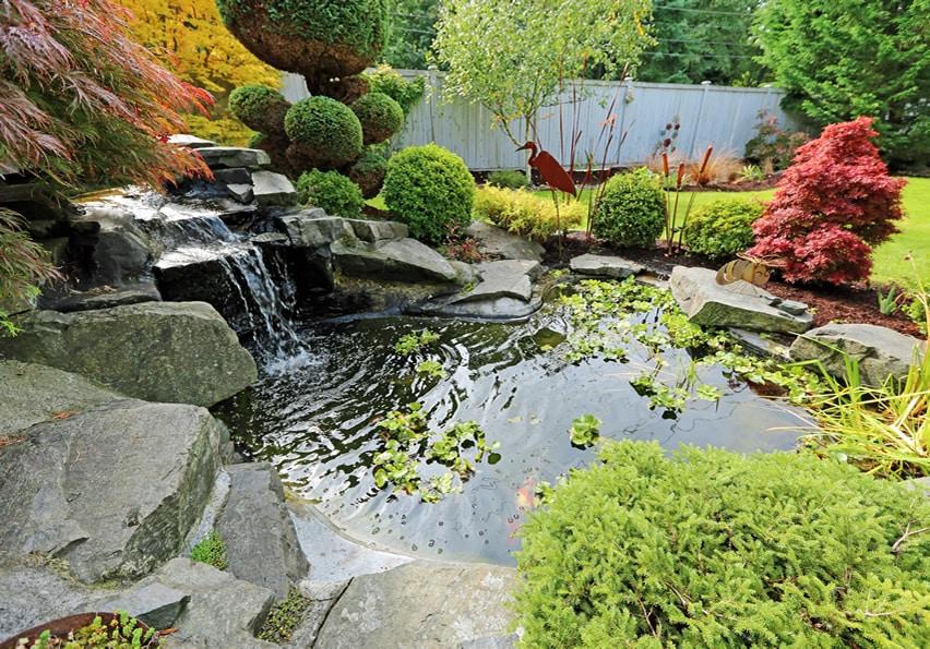 Tropical garden waterfall in home backyard