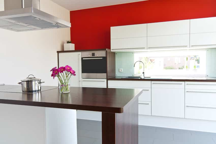 Minimalist modern kitchen with red walls