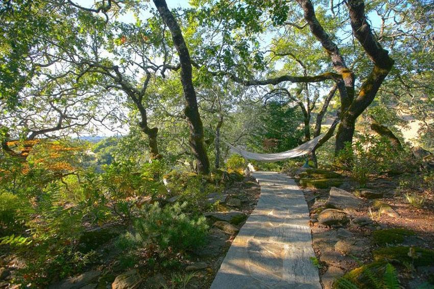 Flagstone paver walkway to hammock