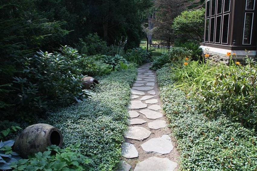 Irregular flagstone pathway