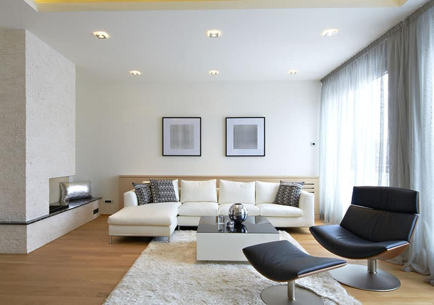 Modern living room with black and white furniture