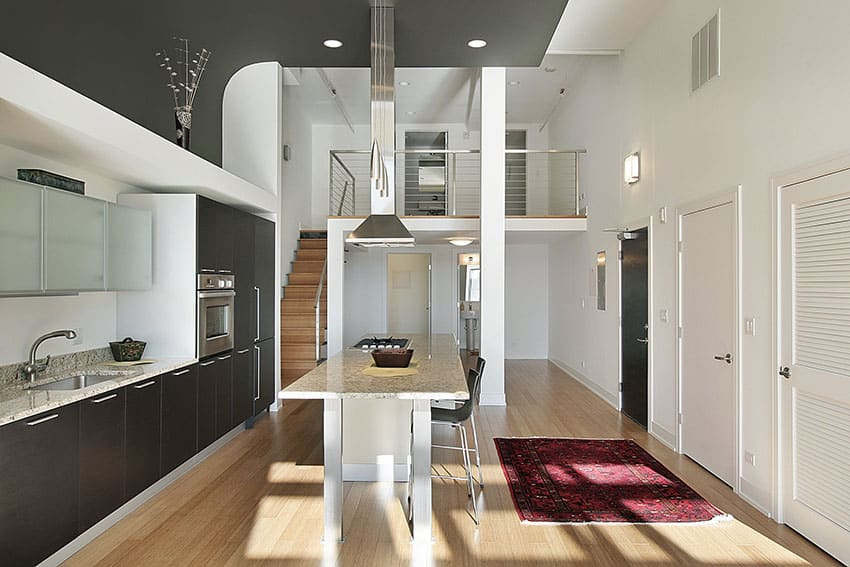 Modern one wall kitchen with island, black cabinets and high ceilings