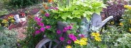 beautiful-wheelbarrow-planter-with-flowers